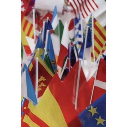 Banderas plastico con palo
