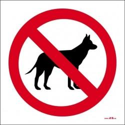 Prohibido el paso a perros