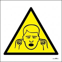 Área de ruido peligroso