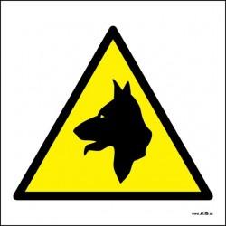 Atención perros